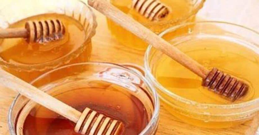 Italia senza miele: dopo gli alveari vuoti, ora crollano anche le importazioni