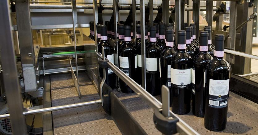 Il vino italiano fattura 11 miliardi Italia primo produttore mondiale