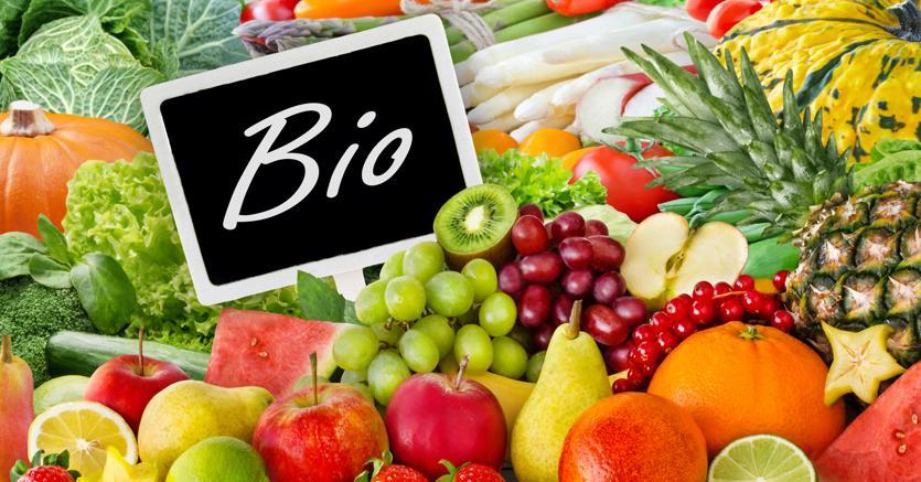 L'agricoltura biologica? «È l'unica sostenibile (e non sono una No Vax)»