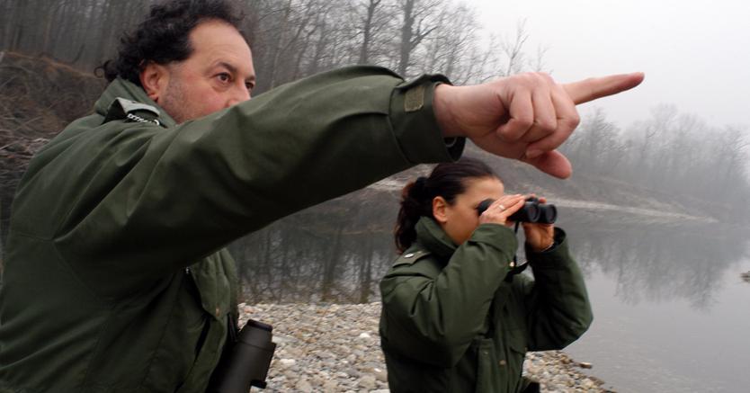 La Consulta: legittimo l'accorpamento dei Forestali ai Carabinieri