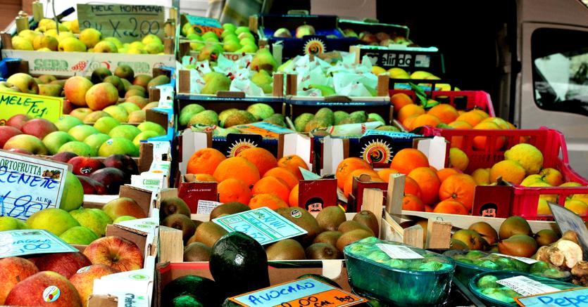 Il 18 e 19 maggio torna la Giornata nazionale del biologo nutrizionista