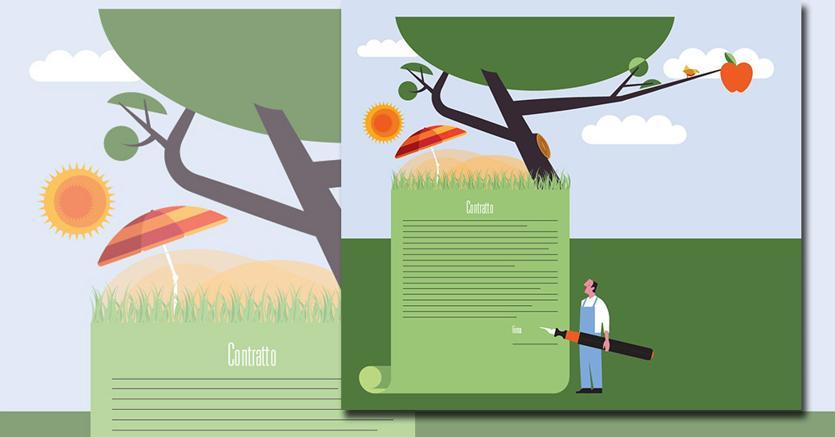 L'estate dei lavori stagionali: tutte le regole nella Guida rapida