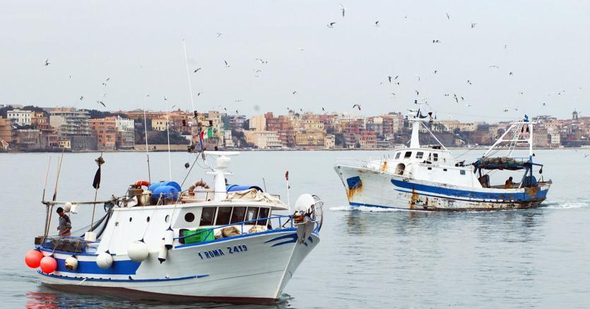 Alghero, Tari dimezzata ai pescatori che raccolgono plastica in mare