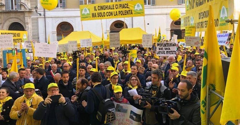 #bastacinghiali: la Coldiretti protesta davanti a Montecitorio