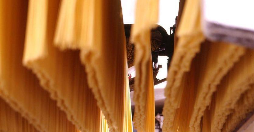 Pasta, la filera aumenta gli investimenti sul grano italiano