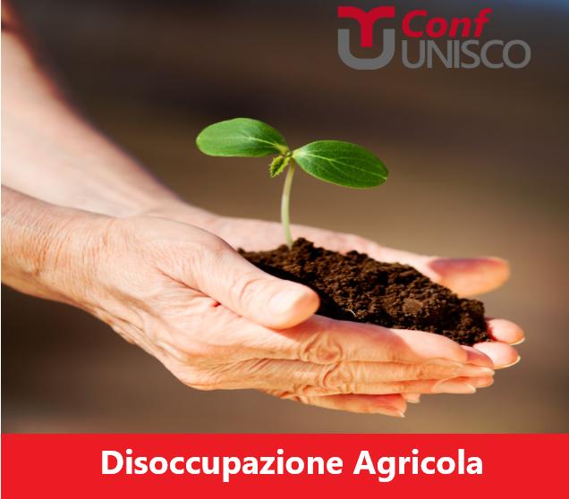 AL VIA ALLA CAMPAGNA PER LE DOMANDE DI DISOCCUPAZIONE AGRICOLA 2021