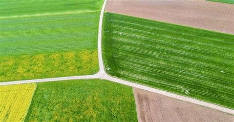 Accordo Tim Confagricoltura per lo sviluppo delle smart farm italiane