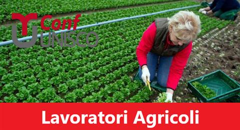 Lavoratori agricoli: esonero contributivo per i primi 6 mesi del 2020