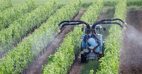 La Ue mette al bando il pesticida Mancozeb: via dagli scaffali entro giugno 2021
