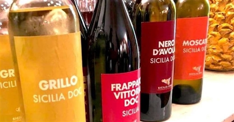 Sicilia, pubblicata graduatoria OcmVino