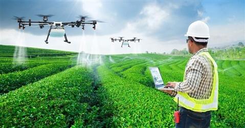 Nasce Agritech innovation, think tank per un'agricoltura sostenibile e digitale