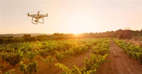 Dai robot nelle stalle al vertical farming, premiata l'agricoltura del futuro