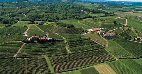 Consorzi agrari d'Italia lancia semi e concimi a marchio proprio